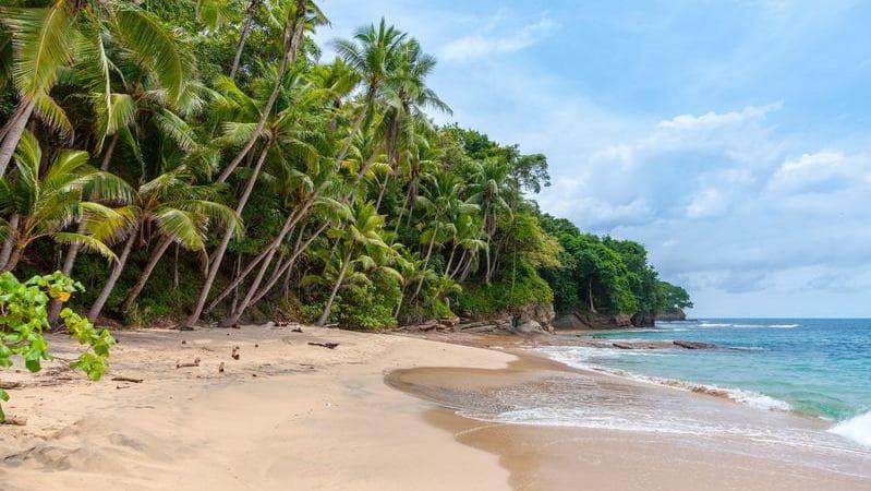 La costa del Caribe de Costa Rica es un destino con playas de arena blanca.