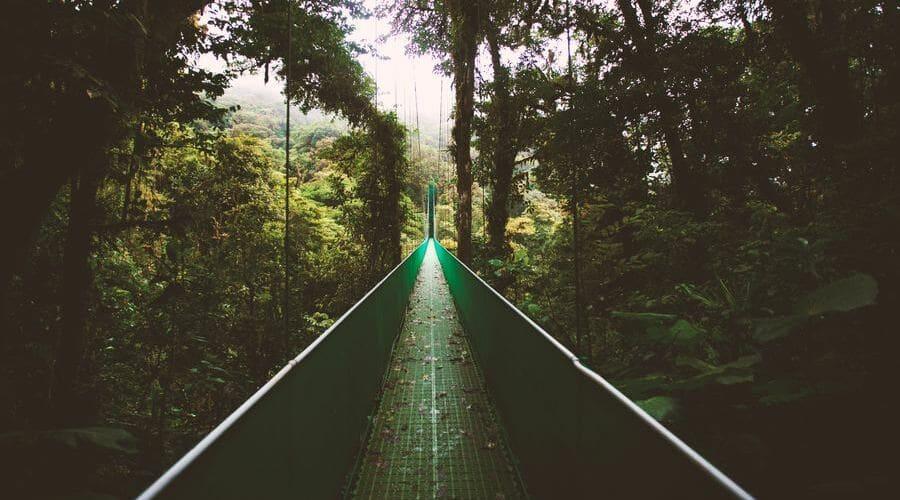 Bosque Nuboso Monteverde es una Reserva situada en el norte de Costa Rica.