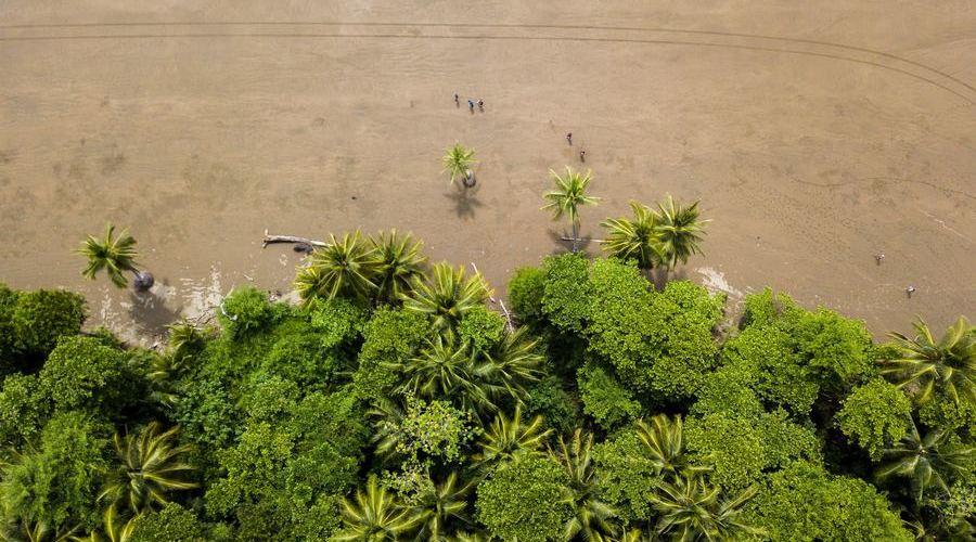 Puntarenas y la zona central del Pacífico de Costa Rica son dos zonas muy turísticas.