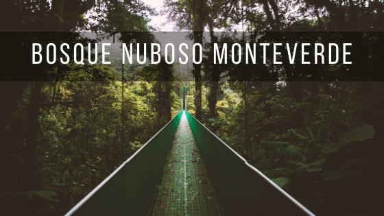 Bosque Nuboso Monteverde es una parque nacional de Costa Rica con una atmósfera mágica.