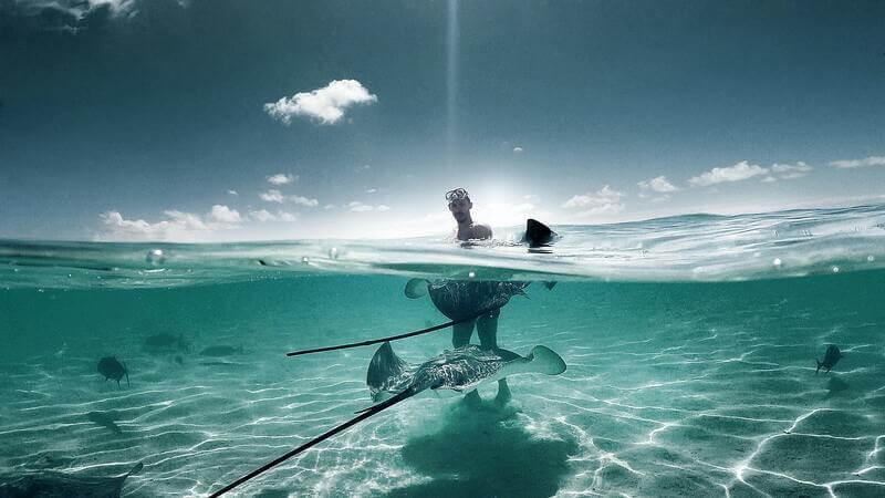 Snorkel en Costa Rica y 2 mantarrayas.